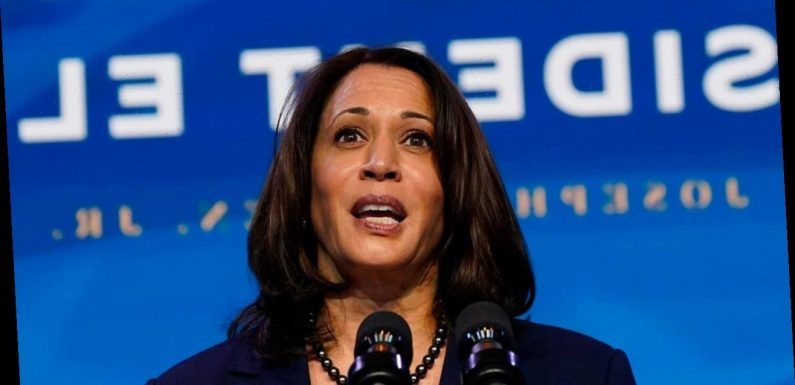 Kamala Harris: What to know about America's first female vice president