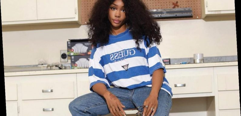 SZA Seemingly Reacts to Accusations That She Fakes Personal Information