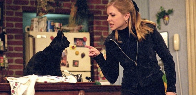 'Sabrina the Teenage Witch': Salem the Cat Wrote 12 Episodes of the Show