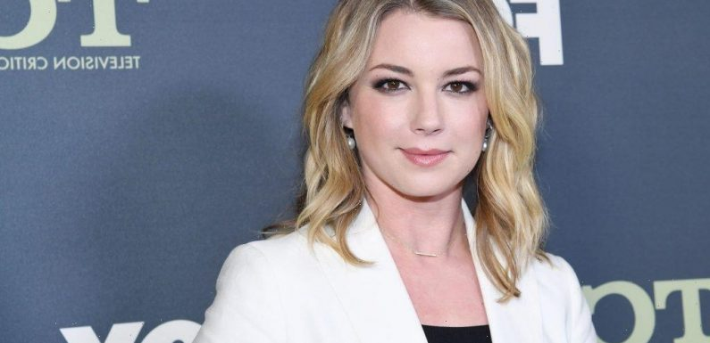 'The Falcon and the Winter Soldier': Emily VanCamp Thinks Marvel Movies 'Are Just Too Big' to Fit Sharon Carter