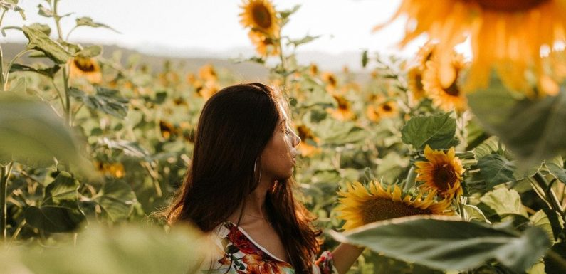 23 Instagram Captions For Sunflowers That'll Instantly Brighten Up Your Day