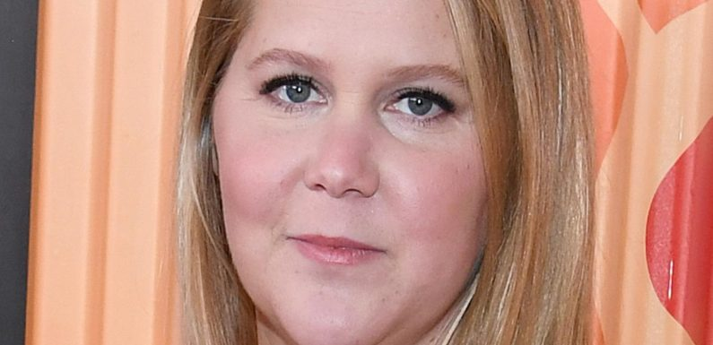 Amy Schumer Reveals How Her Life Has Changed Since Becoming A Mom