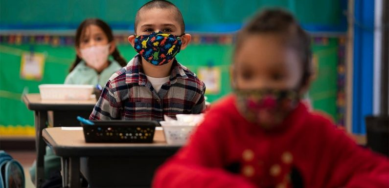 California promotes 'dismantling racism in math' guidance in draft for statewide framework