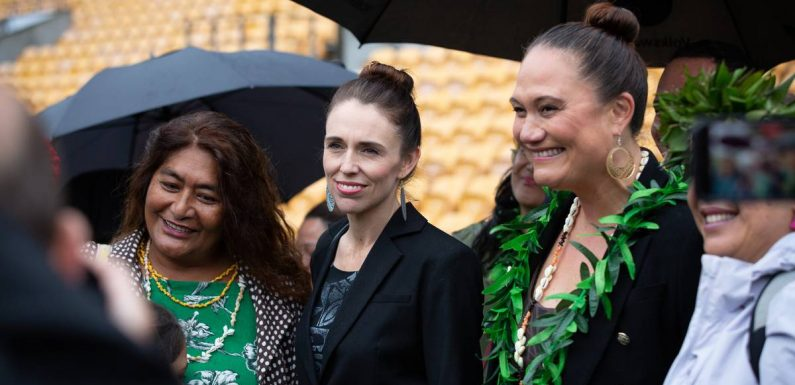 Covid 19 coronavirus: Prime Minister Jacinda Ardern says vaccinated Covid-19 case was cleaning 'high-risk' planes
