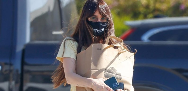 Dakota Johnson Switches Up Her Face Mask While Grocery Shopping