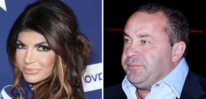 Does Joe Giudice Think Marriage to Teresa Would Last If He Wasn't Deported?