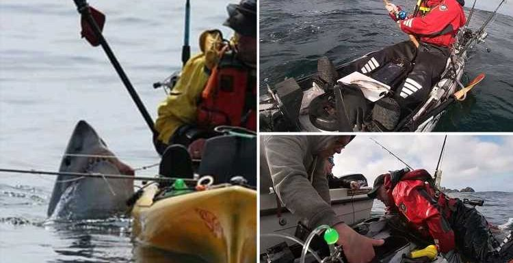 Dramatic moment shark capsizes fisherman's kayak and drags him under water off Irish coast