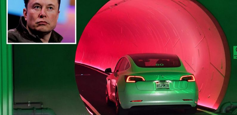Elon Musk's 'futuristic' public transport system blasted as 'slow cars under flashy lights'