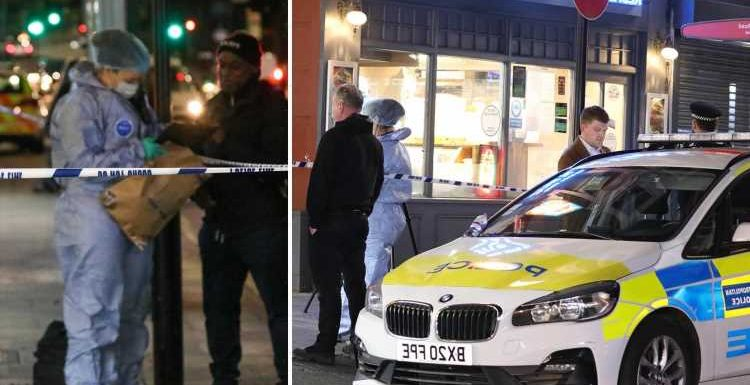 Girl, 16, 'collapsed with knife lodged in her back' after her and pal, 17, seriously injured double stabbing in London