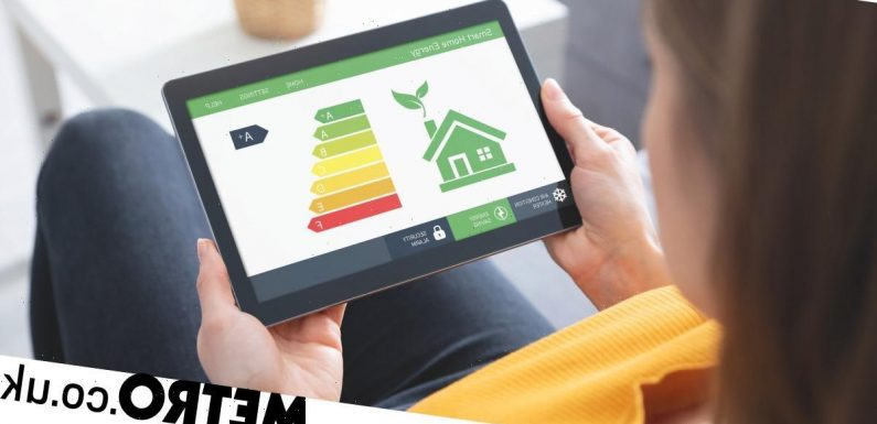 Green Homes Grant scrapped: How to make your home eco-friendly for less