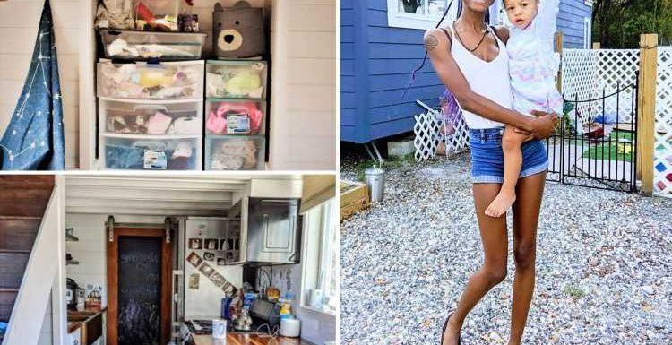 How a single mum turned a tiny 325-square-foot house into a dream pad for her daughter – including clever storage hacks