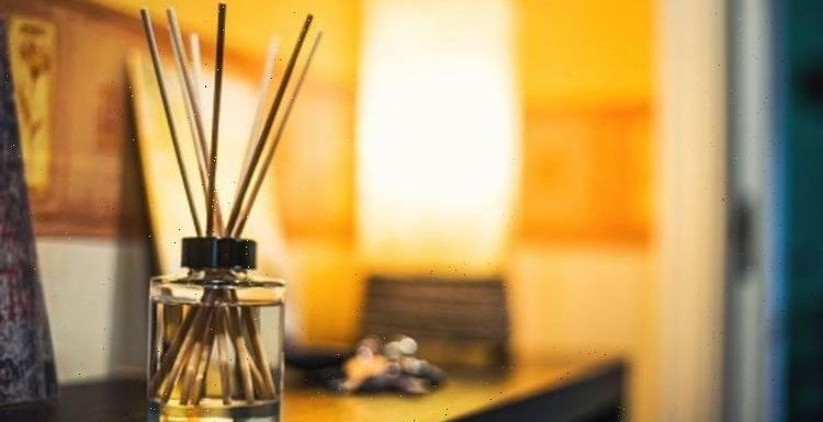 How to make your own reed diffuser – a step by step guide