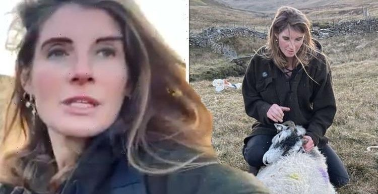 'I was very worried' Our Yorkshire Farm's Amanda Owen shares fears over lambing 'issue'