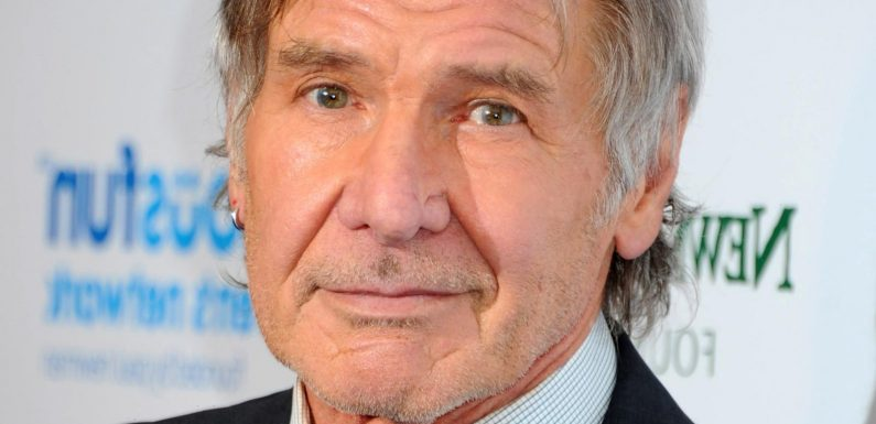 Inside Calista Flockhart And Harrison Ford's Marriage