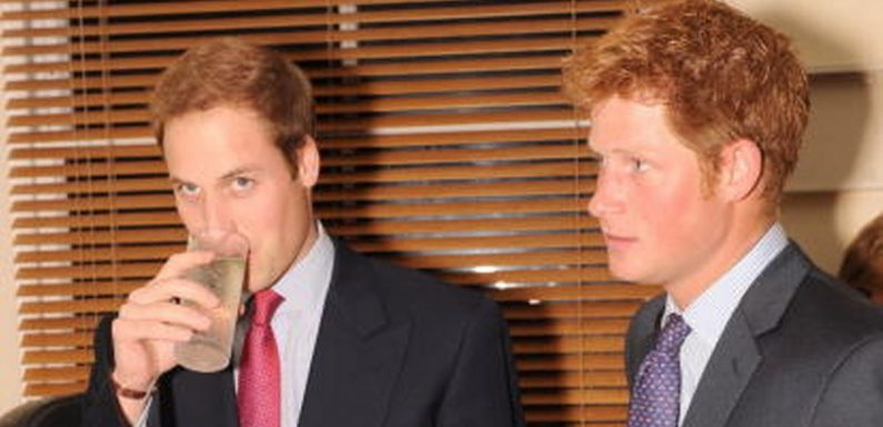 Inside Prince William's boozy stag do with chest wig and 'The Name Game'