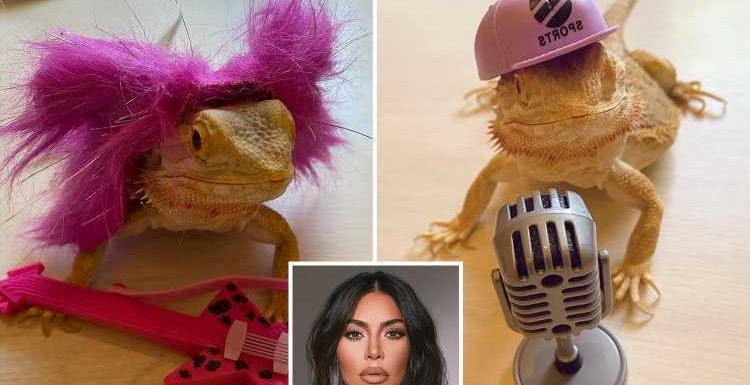 Kim Kardashian slammed for treating bearded dragon 'like a doll' as she dresses pet up in sunglasses and pink wig