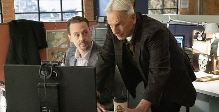 NCIS season 19 release date, cast, trailer, plot: When is NCIS series 19 out?