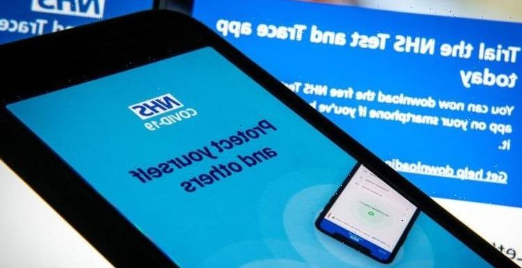 NHS app: How will Covid travel passport work? Do you need to download a new app?
