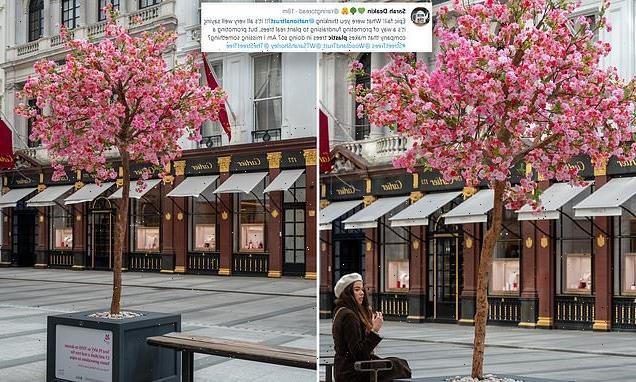 National Trust using fake PLASTIC trees to celebrate blossom season
