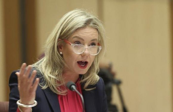 Nationals senator's logging bill chops down Environment Minister's powers