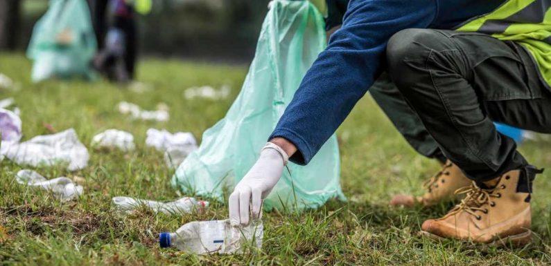 North Carolina man picks up over 8 million pieces of trash, wins hearts on TikTok
