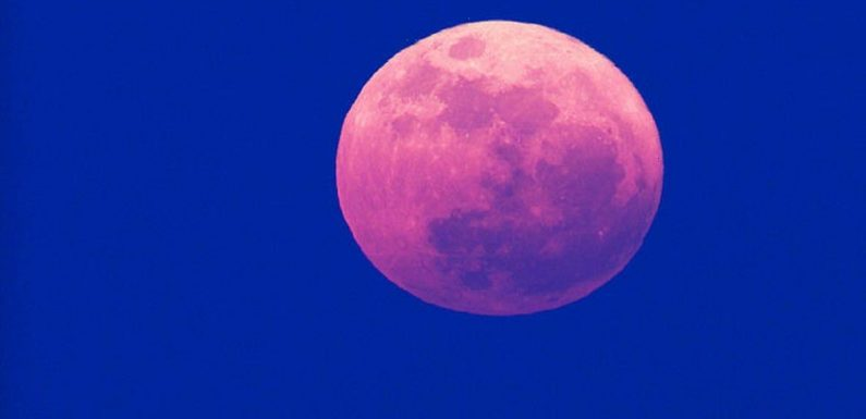 Pink Supermoon will allow you to 'let go of pent-up energies', says psychic