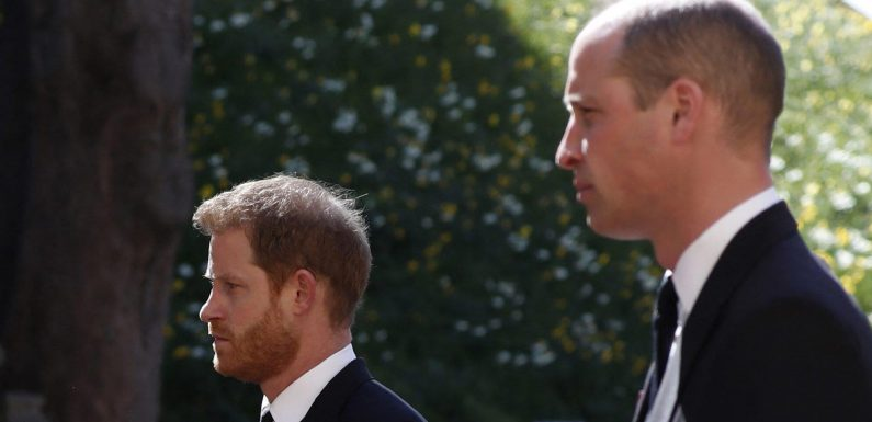 Prince Harry and Prince William Shared a Heartfelt Moment After Prince Philip's Funeral