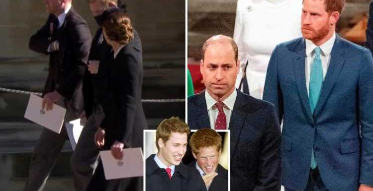 Prince William & Prince Harry moved past 'painful' fallout as 'layers of resentment' are starting to thaw, expert claims
