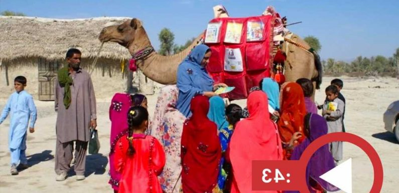 Roshan the camel brings books to homeschooling children in rural Pakistan