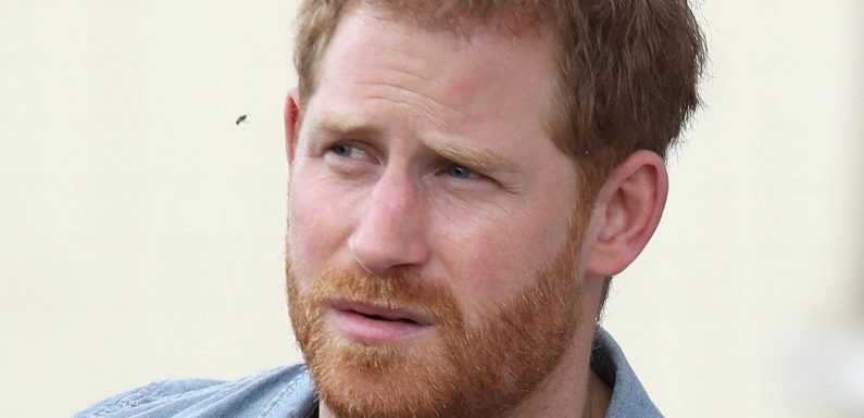 Royal Expert Reveals How Prince Harry Really Felt About His Family's 'Frosty Reception'