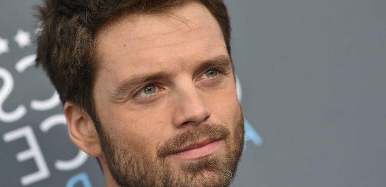 Sebastian Stan on 'The Reason [He's] So Boring' Around Anthony Mackie and Talks Surrounding Luke Skywalker