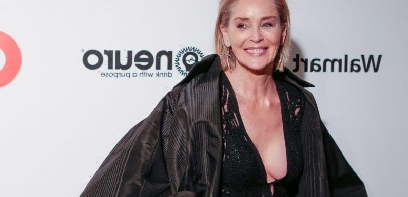 Sharon Stone's 'Mini Seizures' Filming 'Basic Instinct' Had Coworkers Thinking She Was Doing Drugs