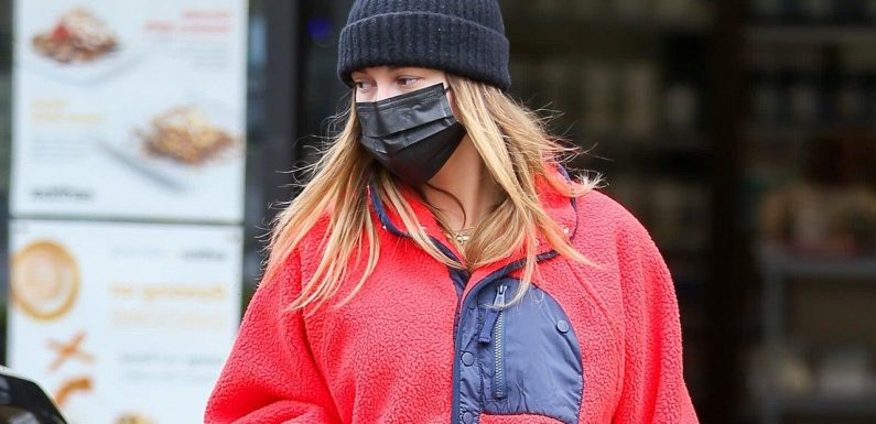Shop Hailey Bieber's Cozy Free People Sweatshirt