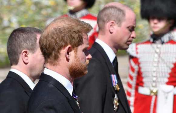 Talks break down between Prince Harry, senior royals over leaks 'from the Sussex side'