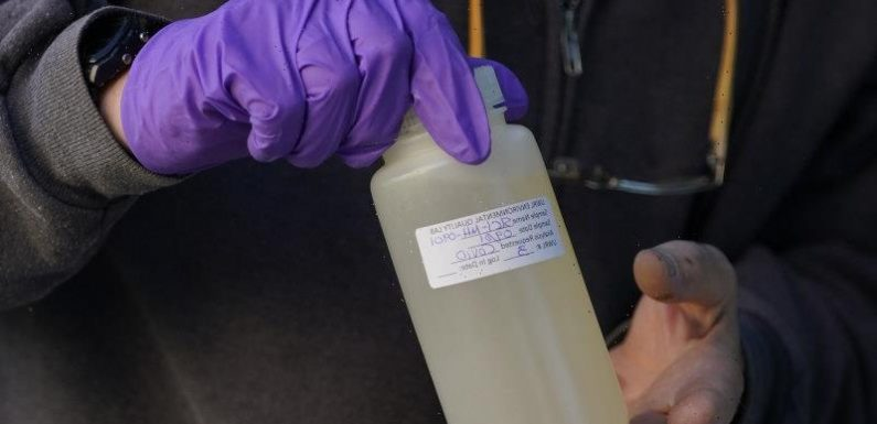 Victoria keeps finding COVID-19 in its wastewater. What's going on?