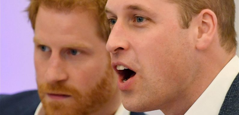 When Will Prince Harry And Prince William Finally Reunite?