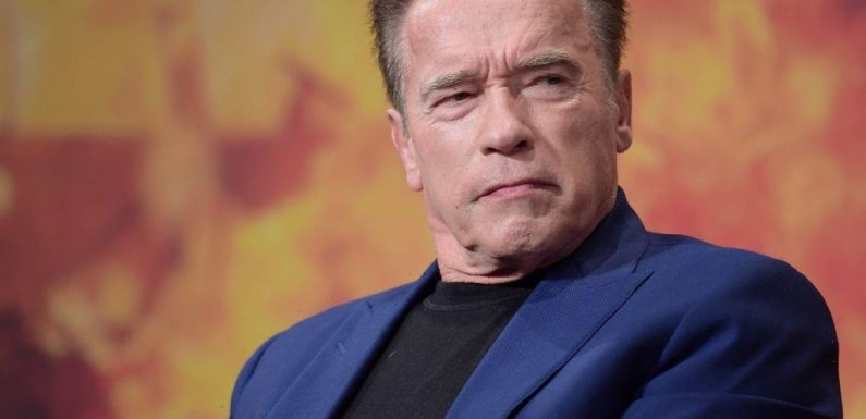 Why Arnold Schwarzenegger Paid $20,000 to Ship a Military Tank From Austria to the US