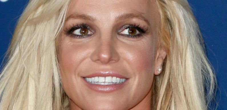 Why Britney Spears' Parents Are Clashing In Court