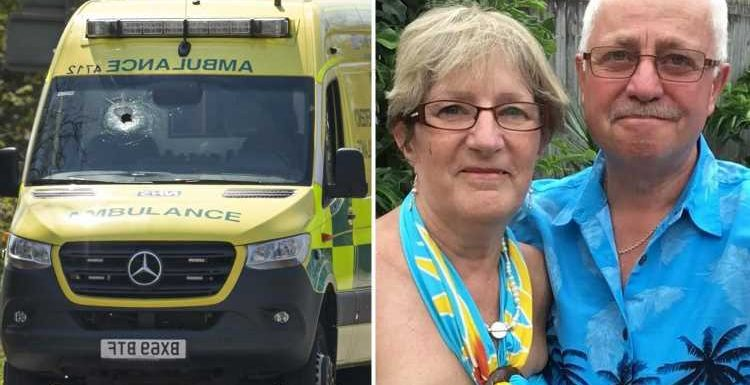 Wife of 'superhero' paramedic's 'world has fallen apart' after he's killed by stone 'flicked off lorry' on 999 callout
