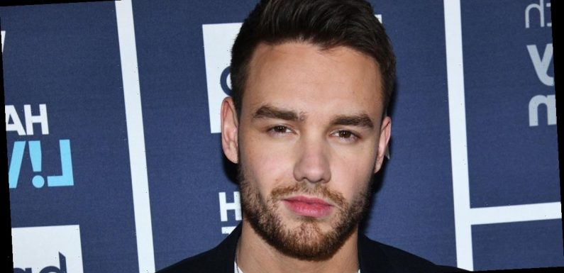 Liam Payne spotted for first time in months as he looks worlds away from One Direction days with long hair