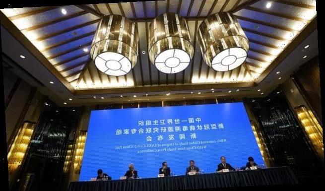 China-WHO study into Covid-19 'has provided no credible answers'