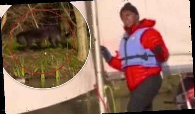 GMB viewers spot mysterious black animal lurking behind Andi Peters