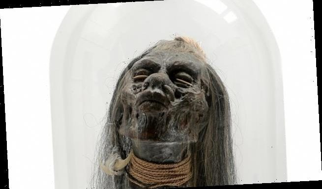 CRAIG BROWN: Yours for just £600, a replica shrunken head
