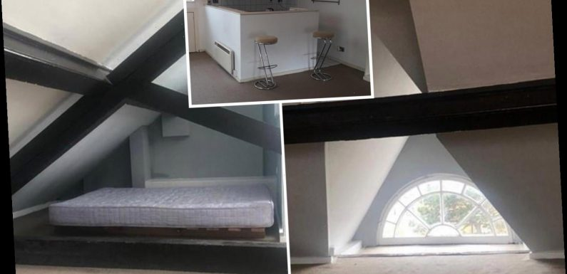 London flat that's so small you'd have to roll out of bed is £930-a-month