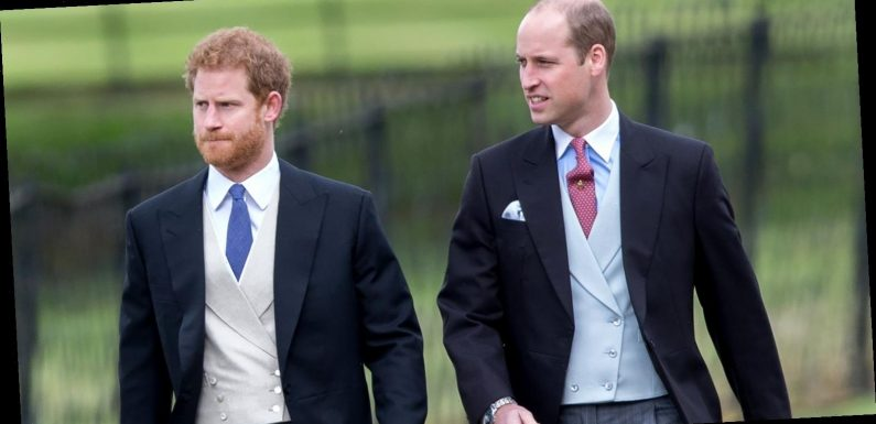Prince William, Prince Harry Only Talked About 1 Thing After CBS Tell-All