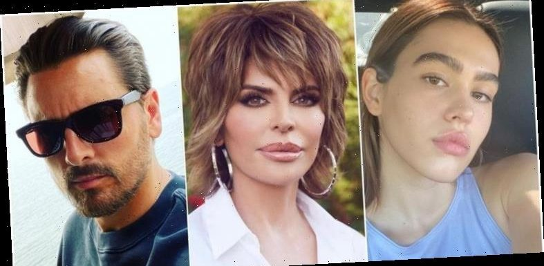 Lisa Rinna's Out Here Trolling Scott Disick and Amelia Hamlin's Latest Pap Pics