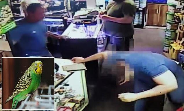 Animal abuser slaughters parakeet after pet store refused him refund