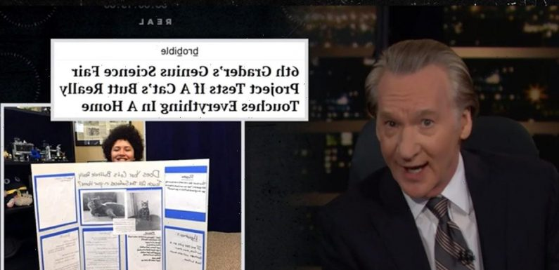 Bill Maher Hysterically Describes Kid Who Put Lipstick on Cat's Butthole