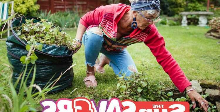 Spruce up the garden and zap your unsightly weeds with these household products