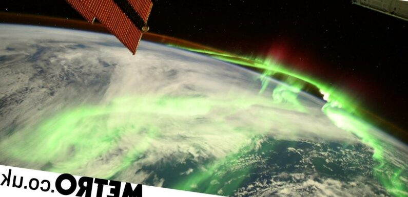 Astronaut snaps incredible picture of aurora lights blazing above the Earth